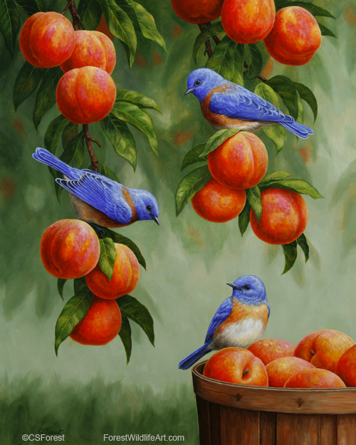jigsaw puzzle of bluebirds in a peach tree by wildlife artist Crista Forest, ForestWildlifeArt.com. Fine Art Prints available