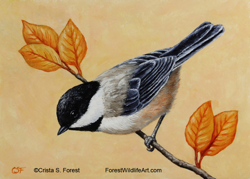 Oil painting of a black-capped chickadee by wildlife artist Crista Forest, ForestWildlifeArt.com.