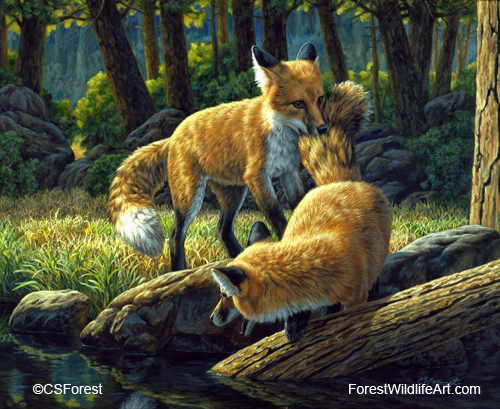 Forest Wildlife Art Wild Dogs Paintings Gallery