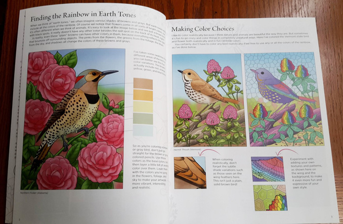 Birds At Home Coloring Book by Crista Forest