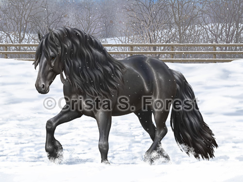 Friesian Horse In Snow Painting