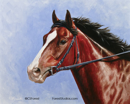 Blood bay thoroughbred racehorse painting
