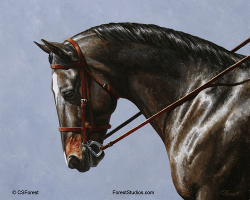 Seal brown dressage horse painting