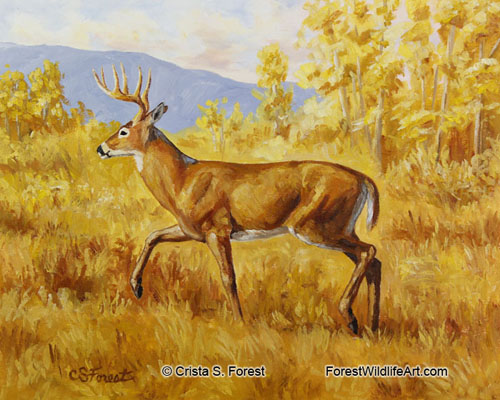 whitetail deer oil painting