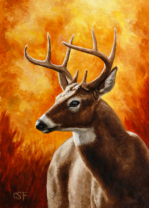Oil painting of a Native American War Horse whitetail buck by Crista Forest